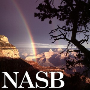 NASB512