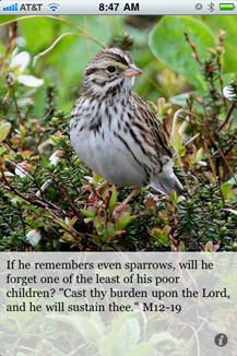 "If he remembers even sparrows, will he forget one of the least of his poor children? ""Cast thy burden upon the Lord, and he will sustain thee."" M12-19"