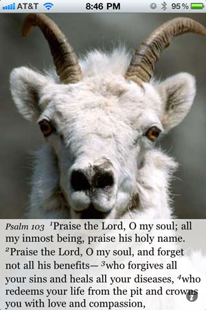 Psalm 103:1 Praise the Lord, O my soul; all my inmost being, praise his holy name. 2 Praise the Lord, O my soul, and forget not all his benefits— 3 who forgives all your sins and heals all your diseases, 4 who redeems your life from the pit and crowns you with love and compassion,
