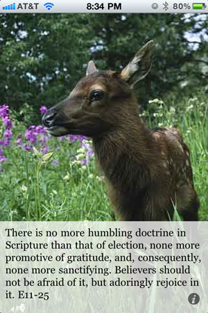 There is no more humbling doctrine in Scripture than that of election, none more promotive of gratitude, and, consequently, none more sanctifying. Believers should not be afraid of it, but adoringly rejoice in it. E11-25