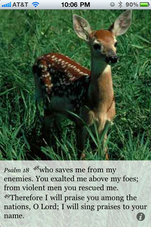 Psalm 18:48 who saves me from my enemies. You exalted me above my foes; from violent men you rescued me. 49 Therefore I will praise you among the nations, O Lord; I will sing praises to your name.