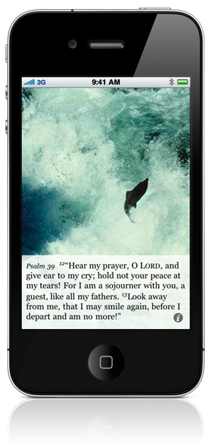 """Psalm 39:12 """"Hear my prayer, O LORD, and give ear to my cry; hold not your peace at my tears! For I am a sojourner with you, a guest, like all my fathers. 13 Look away from me, that I may smile again, before I depart and am no more!"""""""