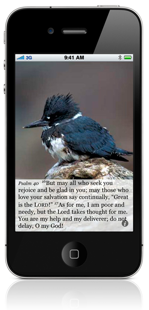 """Psalm 40:16 But may all who seek you rejoice and be glad in you; may those who love your salvation say continually, """"Great is the LORD!"""" 17 As for me, I am poor and needy, but the Lord takes thought for me. You are my help and my deliverer; do not delay, O my God!"""