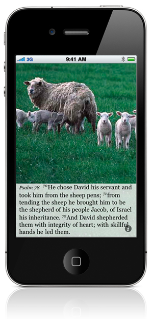 Psalm 78:70 He chose David his servant and took him from the sheep pens; 71 from tending the sheep he brought him to be the shepherd of his people Jacob, of Israel his inheritance. 72 And David shepherded them with integrity of heart; with skillful hands he led them.