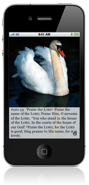 Psalm 135:1 Praise the LORD! Praise the name of the LORD; Praise Him, O servants of the LORD, 2 You who stand in the house of the LORD, In the courts of the house of our God! 3 Praise the LORD, for the LORD is good; Sing praises to His name, for it is lovely.